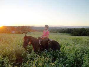 Eleanor horse